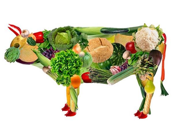 Những điều nhiều người vẫn thường nhầm lẫn về ăn chay