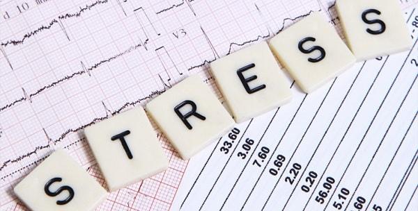 Thường xuyên bị căng thẳng khiến cho trí nhớ giảm sút