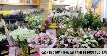 Cách bảo quản hoa cắt cành để được tươi lâu