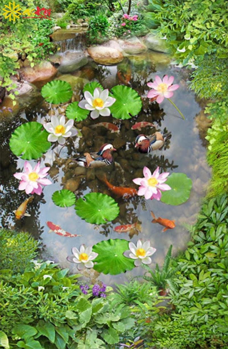 Trồng hoa sen trong hồ cá