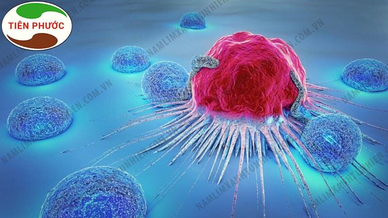Hình ảnh tế bào ung thư